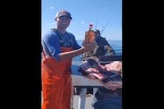 VIDEO: अरे हे काय! मच्छीमाराला माशाच्या पोटात मिळाली Whisky ची बॉटल