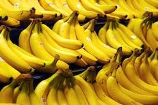 भरपूर कॅलरीज देणाऱ्या केळ्यांनीही होतं नुकसान; होईल पोटदुखी,वाढेल वजन
