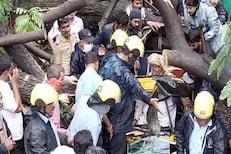 वादळी वाऱ्यामुळे रिक्षावर कोसळलं मोठं झाड, सुदैवाने रिक्षाचालकाचे वाचवले प्राण..