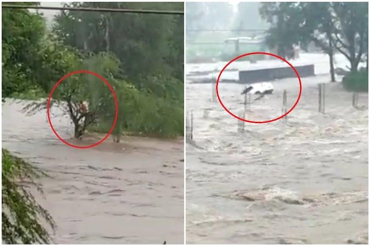 LIVE VIDEO: पुराच्या पाण्यात कार गेली वाहून; एक बचावला तर दोघे बेपत्ता