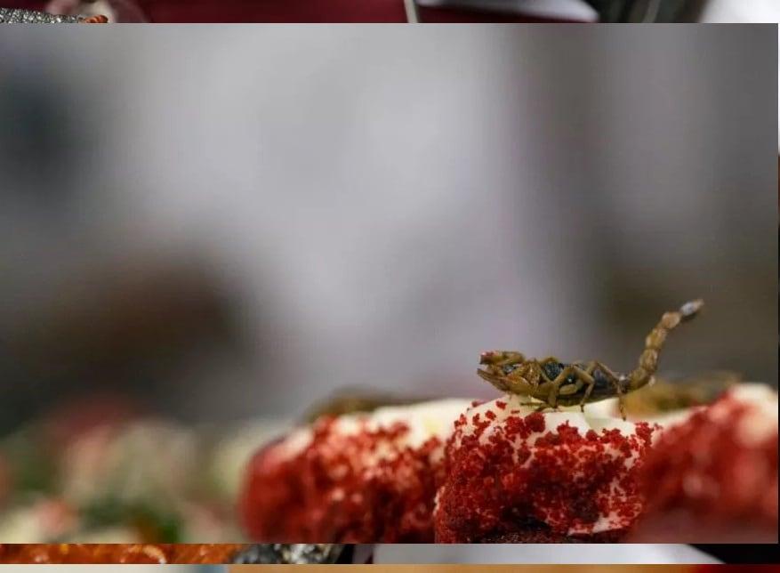 ನ್ಯೂಯಾರ್ಕ್ನ ವಾಲ್ಡೋರ್ಫ್ ಆಸ್ಟೋರಿಯಾದಲ್ಲಿ 110 ನೇ ಎಕ್ಸ್ಪ್ಲೋರರ್ಸ್ ಕ್ಲಬ್ ವಾರ್ಷಿಕ ಭೋಜನಕ್ಕೆ ರೆಡಿ ಮಾಡಲಾದ ಚೇಳು ಹೊಂದಿರುವ ಕಪ್ಕೇಕ್.