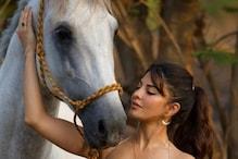 Jacqueline Fernandez: ಲಾಕ್ಡೌನ್ನಲ್ಲೇ ಸಲ್ಮಾನ್ ತೋಟದ ಮನೆಯಲ್ಲಿ ನಡೆಯಿತು ಜಾಕ್ವೆಲಿನ್ ಫೋಟೋಶೂಟ್..!