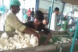 ಚಾಮರಾಜನಗರ: ನಾಳೆ ರಾಜ್ಯದ ಮೊದಲ ಸಹಕಾರಿ ವ್ಯವಸ್ಥೆಯ ತೆಂಗು ಸಂಸ್ಕರಣ ಘಟಕ ಲೋಕಾರ್ಪಣೆ