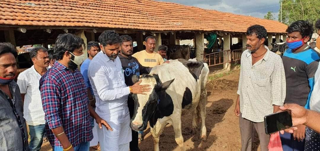 cattles comes to kolar by Indian railway