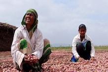 Karnataka Flood: ಮಳೆಗೆ ಕೊಚ್ಚಿ ಹೋದ ಈರುಳ್ಳಿ ಬೆಳೆ; ಕಣ್ಣೀರಲ್ಲಿ ರೈತರು
