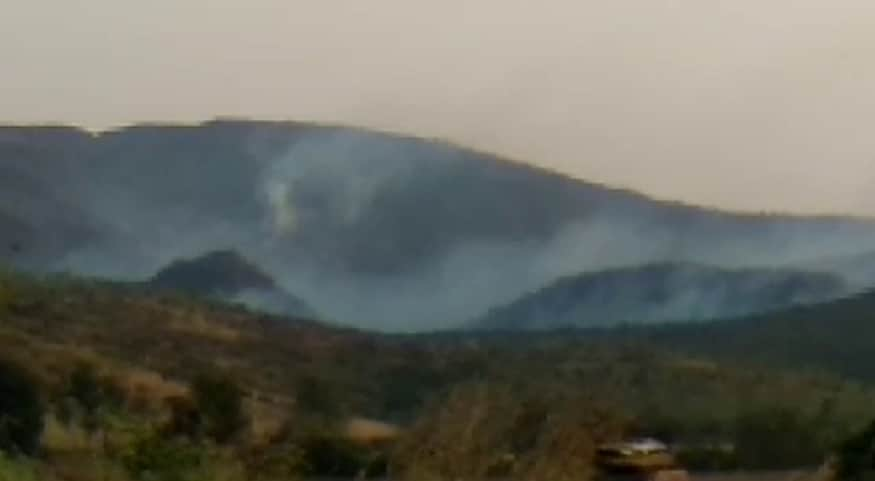 Kappatagudda: Anonymous Spreading fire in Kappatagudda Hill 200 Hectare Forest Land Burned.