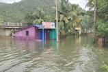 Heavy rain in Karnataka: ತತ್ತರಿಸಿದ ಉತ್ತರ ಕನ್ನಡ; ಕಾಳಿ ನದಿ ಮುನಿಸಿಗೆ ಗ್ರಾಮಗಳು ಜಲಾವೃತ