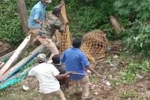 Leopard Caught - ಚನ್ನಪಟ್ಟಣದಲ್ಲಿ ಹೆಣ್ಣು ಚಿರತೆ ಸೆರೆ; ನೆಮ್ಮದಿಯ ನಿಟ್ಟುಸಿರು ಬಿಟ್ಟ ಬೊಂಬೆನಗರಿ ಜನತೆ