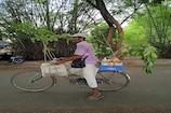 ಮಳವಳ್ಳಿಯನ್ನು ಮಲೆನಾಡು ಮಾಡಿದ ಹಸಿರು ಸೇನಾನಿ, ಇವ್ರ ಪರಿಸರ ಪ್ರೇಮಕ್ಕೆ ಸಾಲುಮರದ ನಾಗರಾಜ್ ಎಂದು ಬಿರುದು