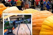 Monster Pumpkin  ಯುರೋಪಿಯನ್ ಚಾಂಪಿಯನ್ಶಿಪ್ನಲ್ಲಿ ಪ್ರಥಮ ಬಹುಮಾನ ಗೆದ್ದ ಇಟಲಿಯ ದೈತ್ಯ ಕುಂಬಳಕಾಯಿ..!