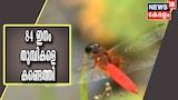 വയനാട് വന്യജീവി സങ്കേതത്തിൽ പുതിയതായി 84 ഇനം തുമ്പികളെ കണ്ടെത്തി