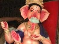 Watch: Gods spread swine flu awarness in K'taka