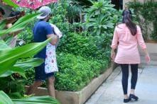 Shahid Kapoor, Mira Rajput Bring Their Newborn Home