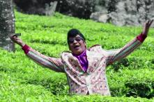 Watch: Vadivelu pays tribute to Rajesh Khanna in 'Eli'