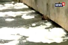 10-feet High Froth Wall After Overnight Rain In Bangaluru's Bellandur Lake