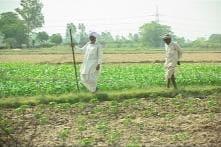 Shankarpura: India's first tobacco-free village