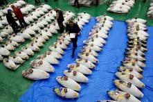World Famous Tsukiji Fish Market Reopens in Tokyo