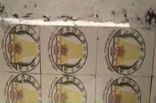 Swachh Bharat Toilets in UP's Bulandshahr Sport Mahatma Gandhi, Ashok Chakra Tiles