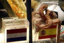 Astrologer 'octopus Paul' gets a successor