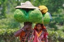 Narendra Damodar Jadhav | Budget Has Let Down Social Protection