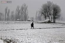 North India reels under intense cold, temperatures dip further