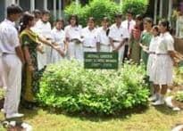Mumbai school is rooted to wonders of Ayurveda