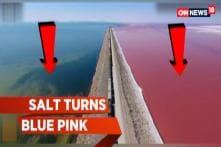 Watch: Salt Lake Turns Blue Pink