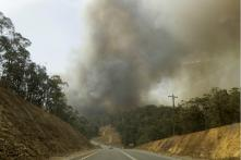 Shock, Fear and Sadness Grip Australia's 'Bushfire Refugees'