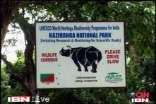 Two rhino poachers killed in Assam