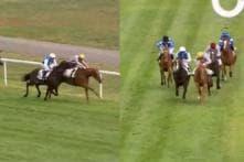 Watch: Horse Bites Rival Jockey In an Attempt to Win Race in France