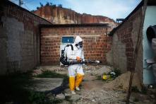 Zika virus may infect, kill human brain stem cells