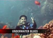 Wishing Team India well underwater