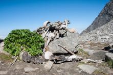The Mystery of Uttarakhand's Skeleton Lake Just Got Weirder With Strange DNA Discovery