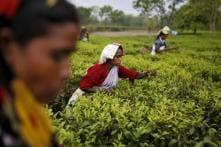 Govt Cancels Notifications Which Deferred Delimitation in Assam, Nagaland, Arunachal Pradesh, Manipur