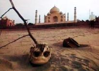 Wah Taj! It's an artist's inspiration