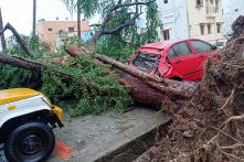 PHOTOS: Cyclone Gaja Wreaks Havoc in Tamil Nadu