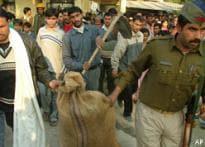 UP govt assures action in Noida case
