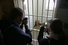 Charity's Plan For 'Sleepover' at Nelson Mandela's Prison Cell Slammed