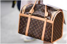 Man Leaves Drugs, Gun and Cash in Designer Bag in Convenience Store in US