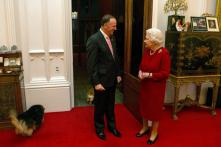 Britain Queen's dogs served steak on silver platters