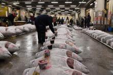 Tokyo's Tsukiji Fish Market Holds Last New Year Auction Before Closure