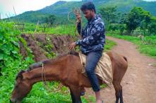 Meet This Teacher from Andhra Pradesh Who Rides on a Horse to Reach his Place of Work