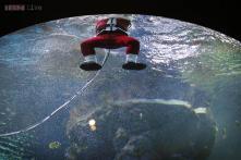 Snapshot: Singapore's Santa Claus goes underwater to spread X'mas cheer