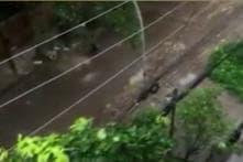 Watch Amateur Video of Dhaka Terror Attacks