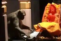 Viral Video:  ਹਨੁੰਮਾਨ ਜੀ ਦੇ ਮੰਦਰ 'ਚ ਆਇਆ ਬਾਂਦਰ, ਪੜ੍ਹਨ ਲੱਗਾ ਰਮਾਇਣ
