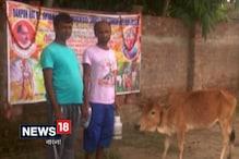 Video: বাংলার মহিলাদের আর্থিক স্বনির্ভর করতে বিনাপয়সায় বিলি হচ্ছে গরু