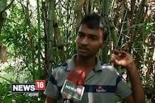 Video: 'পরী' ছবির শ্যুটিং সেটে দুর্ঘটনা, উপস্থিত ছিলেন অনুষ্কা শর্মা এবং পরমব্রত চট্টোপাধ্যায়