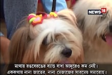 video: বর্ধমানে মজার ডগ শো