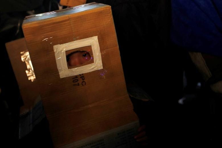 A child takes cover inside a cardboard box, during the 'Beehive Firecrackers' festival at the Yanshui district in Tainan, Taiwan. (Image: REUTERS)