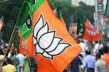 Chhattisgarh 2nd phase Election : ২ দিনে ৩৫ সভা বিজেপির সঙ্গে তারকার ছড়াছড়ি
